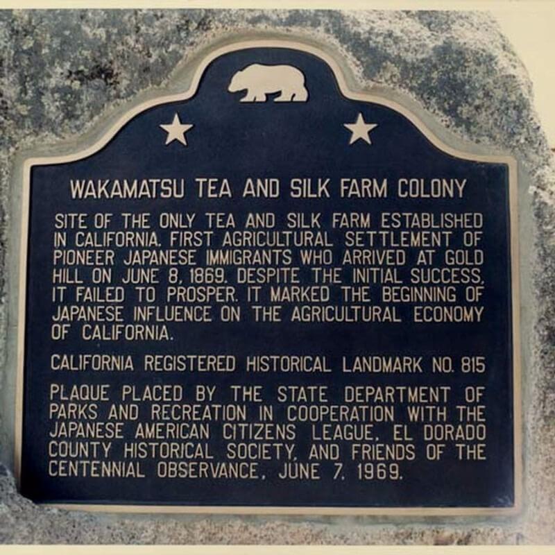 WakamatsuTea