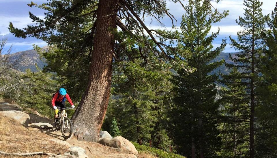 woman on one of Tahoe's mountain bike trails