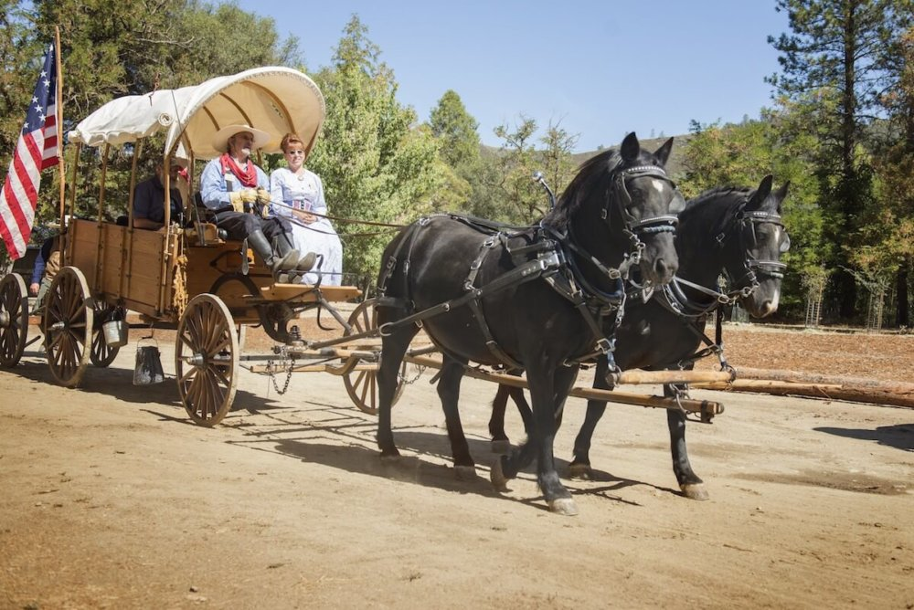 Gold Rush Live at Marshall Gold SP - living history event in El Dorado County