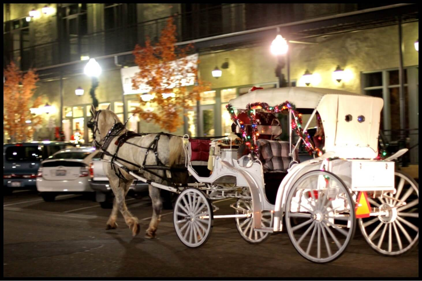 El Dorado Hills Christmas-Carriage-Rides
