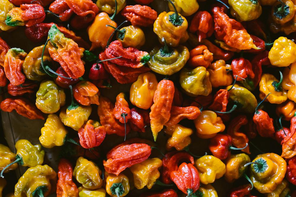 24 Carrot Farm peppers, El Dorado County