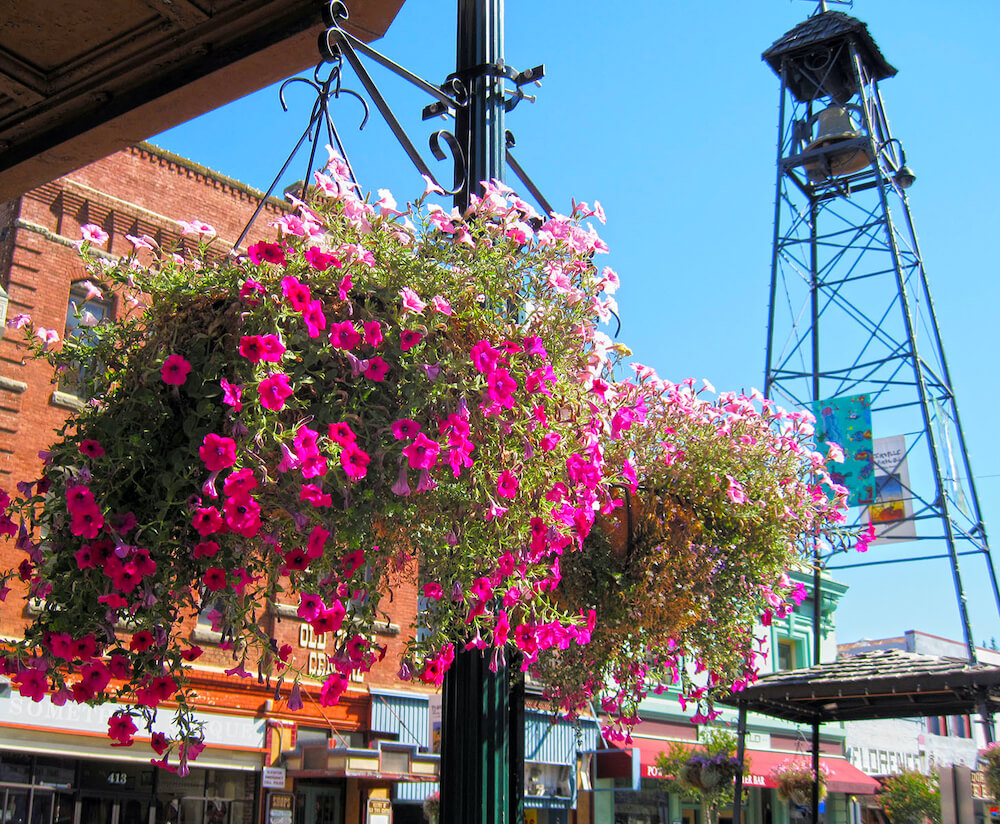 Summer in Placerville - Photo: Bill Robinson